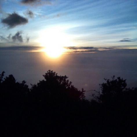 Matahari Yang Menyilaukan Tapi Hangat